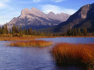 Canada, Alberta, Banff National Park, Marsh Grass in Vermilion Lakes and Mount Rundle by John Barger