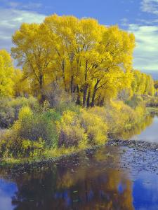 Colorado, Curecanti National Recreation Area by John Barger