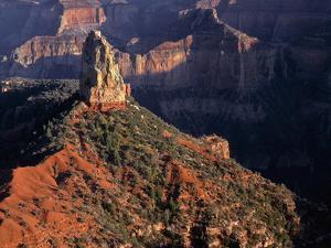 USA, Arizona, Grand Canyon National Park, North Rim by John Barger