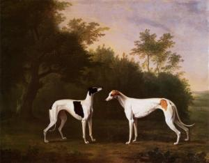 Two Greyhounds in a Landscape by John Boultbee