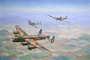 Bringing Home the Straggler by John Bradley