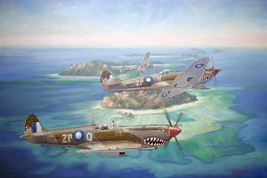 Shark Attack by John Bradley