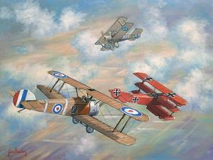 The Red Baron Bugs Out by John Bradley
