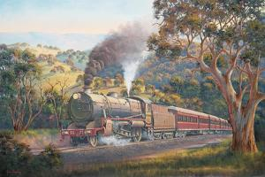Western Express by John Bradley