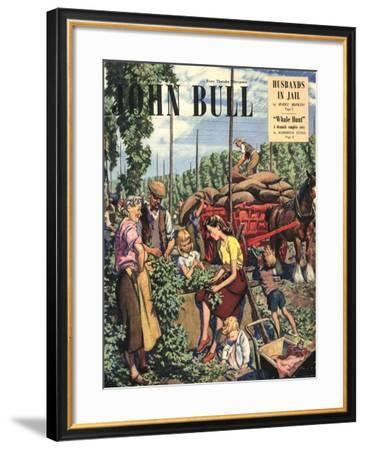John Bull, Farming Hops Magazine, UK, 1948--Framed Giclee Print