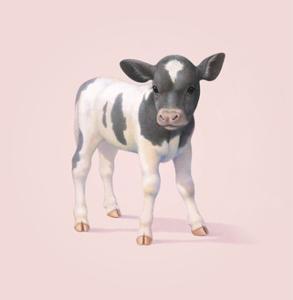 Cow by John Butler Art