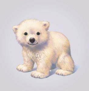 Polar Bear by John Butler Art