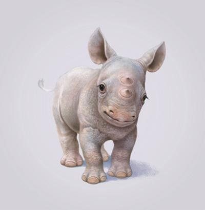 Rhino by John Butler Art