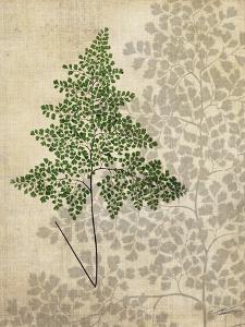British Ferns I by John Butler