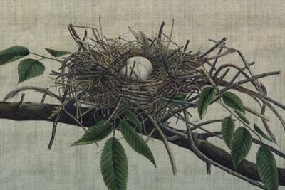 Nesting III by John Butler