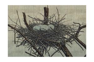 Nesting IV by John Butler