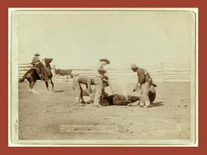 Branding Calves on Roundup by John C. H. Grabill