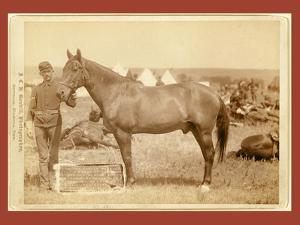 Comanche by John C. H. Grabill