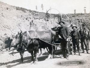 Gold Fever in South Dakota, 1889 by John C. H. Grabill