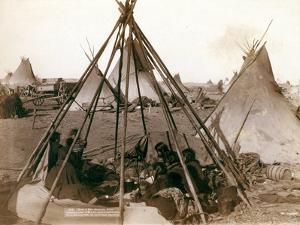 Home of the wife of Dakota chief, American Horse by John C. H. Grabill