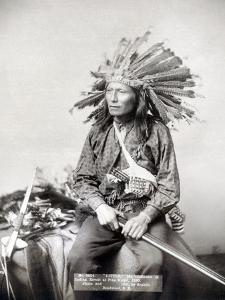 Sioux Leader, 1891 by John C.H. Grabill