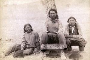 Three Lakota teenage boys in western clothing, 1891 by John C. H. Grabill