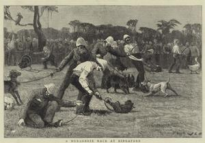 A Menagerie Race at Singapore by John Charles Dollman