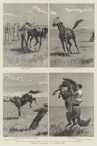 Horse Ranching in Queensland by John Charles Dollman
