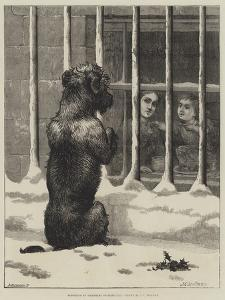 Supported by Voluntary Contributions by John Charles Dollman