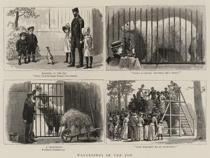 Wanderings in the Zoo by John Charles Dollman