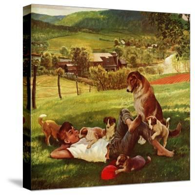 """Dog Days of Summer"", June 25, 1955"