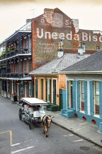 Louisiana, New Orleans, French Quarter, Dumaine Street, Historic Uneeda Biscuit Sign by John Coletti