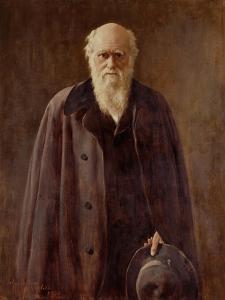 Portrait of Charles Darwin by John Collier
