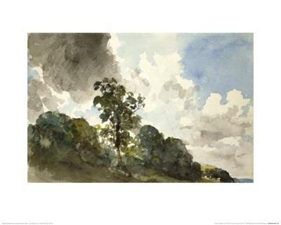 A Study of Clouds and Trees by John Constable