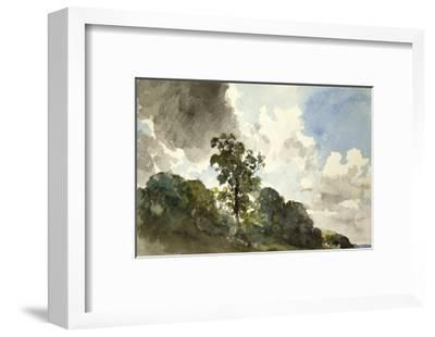A Study of Clouds and Trees