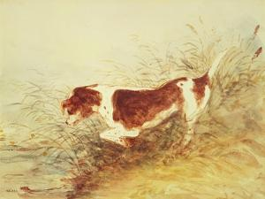 Dog Watching a Rat in the Water at Dedham by John Constable