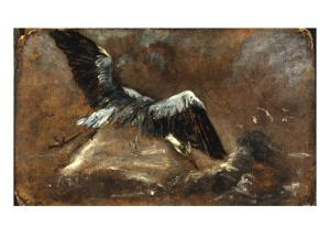 Study of a Heron (Verso) by John Constable