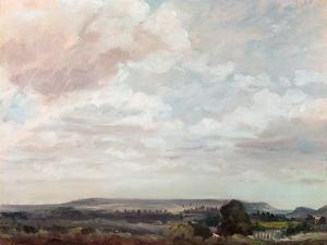 View in Wiltshire by John Constable