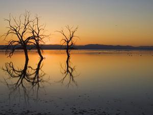 Salton Sea Sunset, Southern California, USA by John Cornell