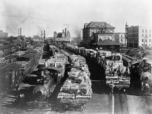Trains Full of Cotton in Texas by John D. Roberts