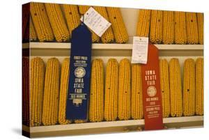 1955: First and Second Place Ribbon-Winning 'Field Corn' Entries at the Iowa State Fair by John Dominis