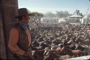 """Actor John Wayne During Filming of Western Movie """"The Undefeated"""" by John Dominis"""