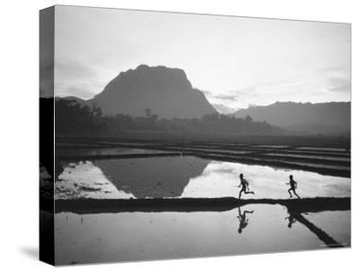 Boys Running Through Flooded Rice Paddy