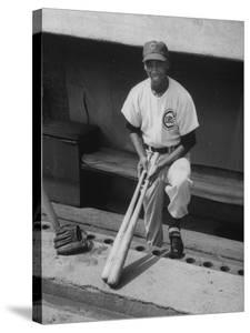 Chicago Cub's Ernie Banks, Stooping in the Dug-Out Holding Two Bats Against Cincinnati Reds by John Dominis