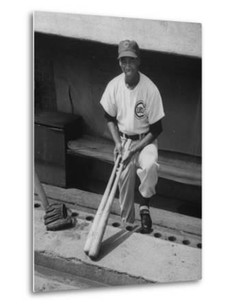 Chicago Cub's Ernie Banks, Stooping in the Dug-Out Holding Two Bats Against Cincinnati Reds