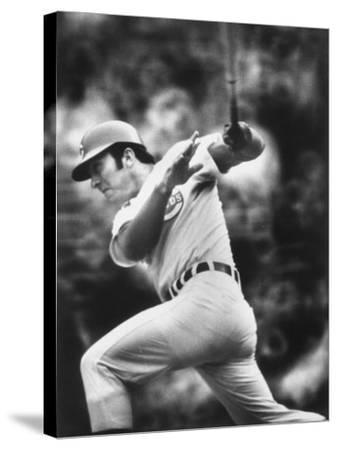 Johnny Bench, During Baseball Game, in Cincinnati
