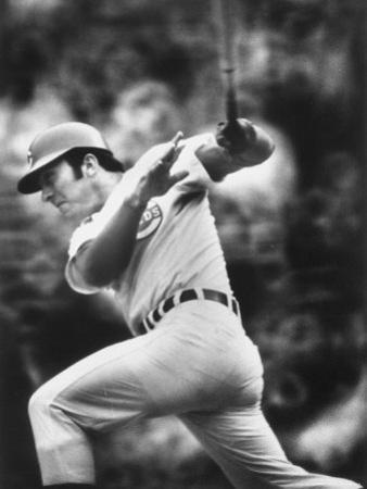 Johnny Bench, During Baseball Game, in Cincinnati