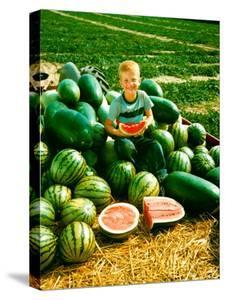 Seedless Watermelons at Purdue University by John Dominis