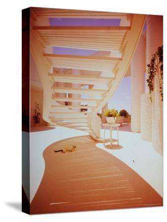 Siamese Cat Resting under Suspended Curved Stairway in Paul Rudolph Designed House