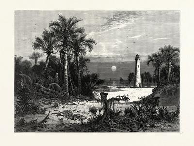 Moonrise on the Coast of Florida