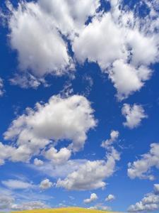 Beautiful Cumulus Clouds and Golden Prairie by John Eastcott & Yva Momatiuk