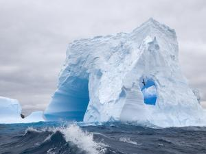 Blue Iceberg Sculpted by Waves and Southern Giant Petrel in Flight by John Eastcott & Yva Momatiuk