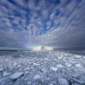 Blue Tabular Iceberg Sculpted by Waves by John Eastcott & Yva Momatiuk