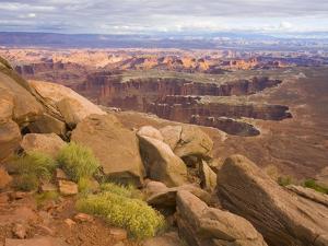 Canyon in Desert Landscape by John Eastcott & Yva Momatiuk