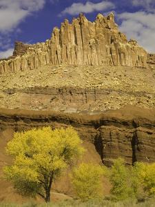 Castle and Fluted Wall Formations in Capitol Reef National Park by John Eastcott & Yva Momatiuk